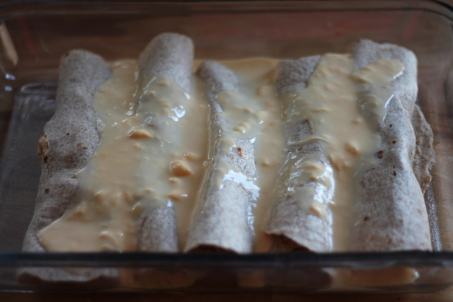 Cheesy Chicken Enchiladas10