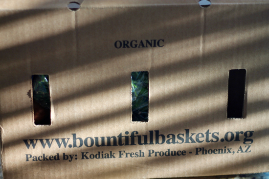 Bountiful Baskets - 1